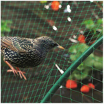 4*10M Anti Bird Bird-Preventing Net Netting Mesh For Fruit Crop Plant Tree M5R9E