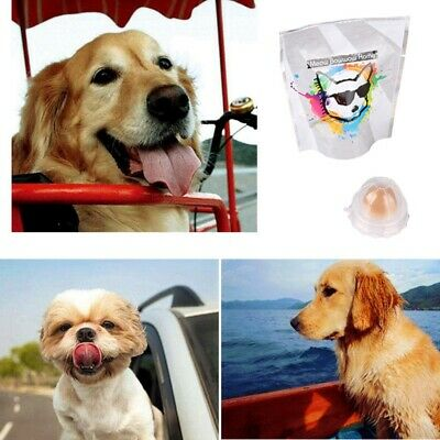 Pet Dog Cat Snacks Catnip Sugar Candy Licking Healthy Nutrition Energy Ball Toys