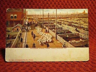 Early 1900'S. Exchange Ave. Stock Yards. Chicago, Ill. Postcard G3
