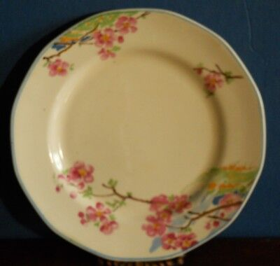A hand painted cherry blossom vintage tea plate