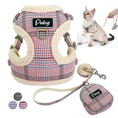 Front Leading Cat Walking Jacket Harness & Leash Set Mesh Padded Vest for Puppy