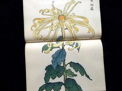 KEIKA Beautiful Bizarre Chrysanthemum Collection Color Woodblock print Book #3