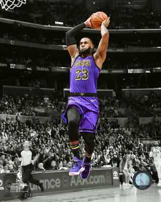 c09fc104661 LEBRON JAMES Slam Dunk SPOTLIGHT 8X10 Action Photo LOS ANGELES LAKERS