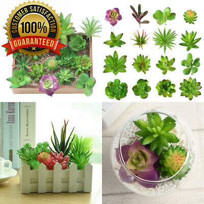 KUUQA 16 Pcs Mixed Artificial Succulent Flowers Plants Unpotted Decor Stems...
