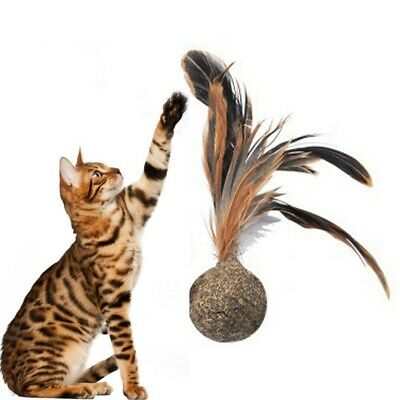 Pet Cat Feather Catnip Ball Toy Kitten Catnip Catch Teaser Chewing Playing Toy