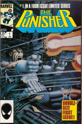 The Punisher over 300 issues on dvd