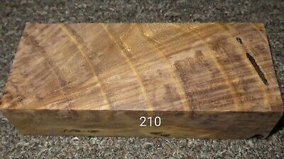 №210 Oak Stabilized Curly Wood burl, with fungus, Knife Scales Pistol Grips