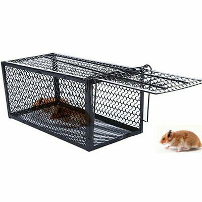 Rat Catcher Cage Trap Spring Humane Large Live Animal Rodent Indoor Outdoor