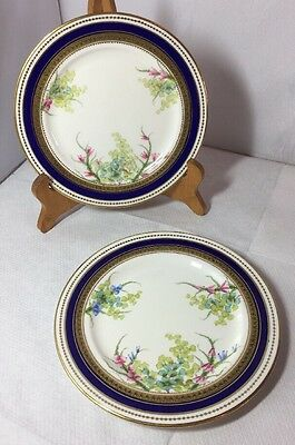 Pretty Antique Victorian Pair Of Hand Painted Plates Unmarked Good Quality Old