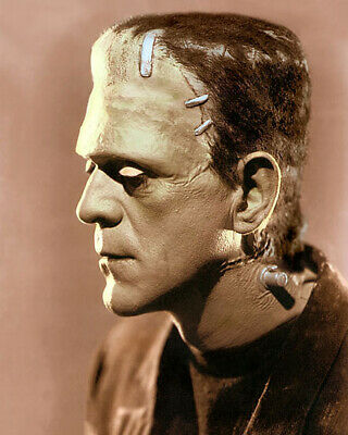 "BORIS KARLOFF (P) THE BRIDE OF FRANKENSTEIN 1935 8x10"" HAND COLOR TINTED PHOTO"