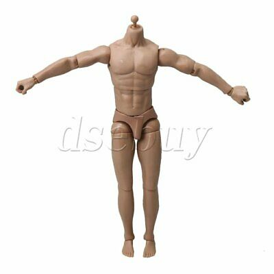 Plastic 1:6 Scale Action Muscle Male Body Figure Soldier Men Model Toys Doll