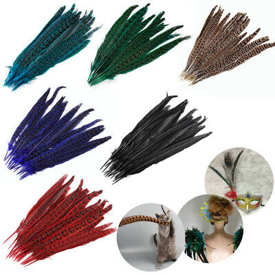 10-100Pcs Beautiful Natural Pheasant Tail Feathers 10-12 Inch /25-30cm Length