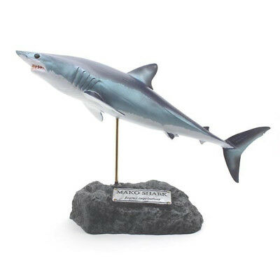 Kaiyoukoubou Shortfin mako shark Real figure Fish carving Isurus oxyrinchus