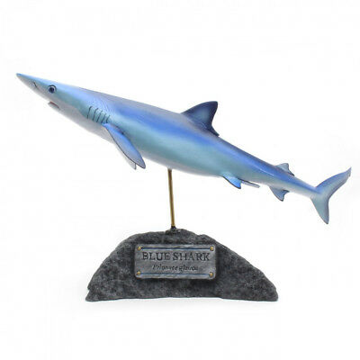 Kaiyoukoubou Blue shark Real Figure Fish carving Prionace glauca From Japan F/S