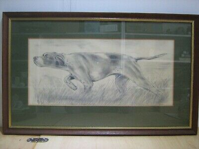 Signed framed pencil drawing of a Pointer Dog