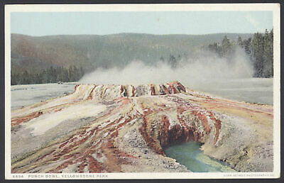 "Yellowstone Nacional Parque, Wyoming. The Punch Cuenco Vintage ""Phostint Cm"