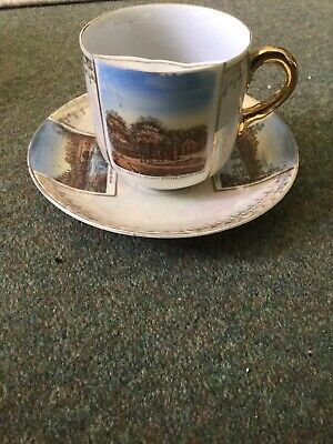 A Moustache Cup From Builth Wells Victorian/Edwardian