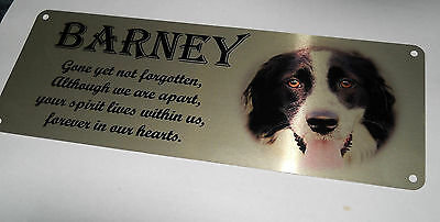 Pet memorial bench plaque with photo, Aluminium, remembrance, grave marker