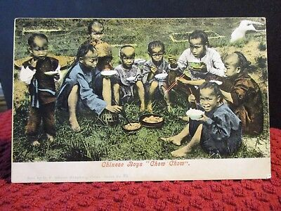 """Early 1900'S. Chinese Boys """"Chow Chow"""" Postcard"""