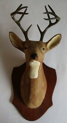 Antique Miniature Faux Taxidermy Buck Mount by Doutt Product Apollo,Pa.