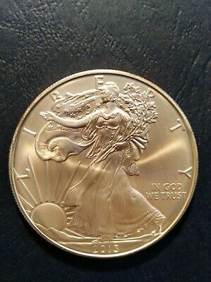 2013 American Silver Eagle One Dollar 1 Troy Oz. .999 Fine Silver Coin