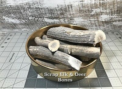 Scrap Elk and Deer Antlers One (1) Pound of Whole and Split Bones Animal Feed