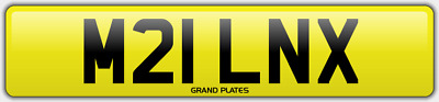 Miln Milne Milns Milnes Number Plate Milner M21 Lnx Car Reg No Added Fees To Pay