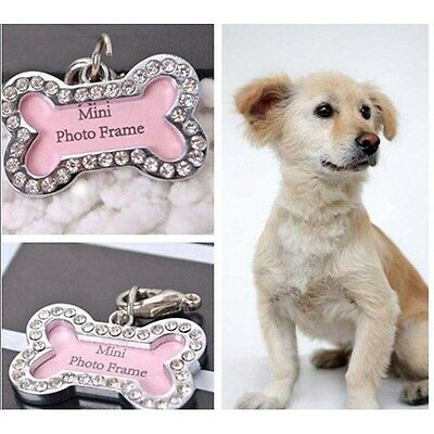 Customized Personalized Bone Shaped Dog Tag Stainless-Steel Pet Cat Dog ID TJKC