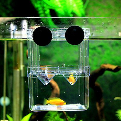 Aquarium Fish Tank Guppy Double Breeding Breeder Rearing Trap Box Hatchery