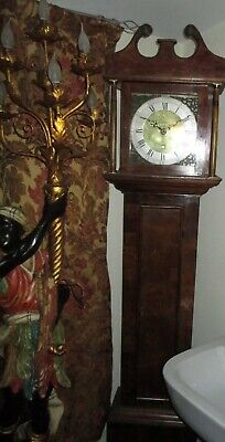 John Coates of Cirencester Fruitwood cased Grandfather Clock