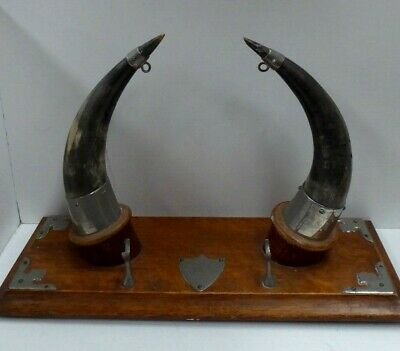 Antique Cattle Horn Dinner Gong Stand Oak & Silver Plate - Shield Plaque