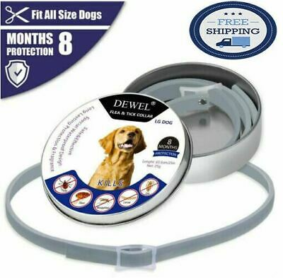 Bayer Seresto Foresto flea and tick collar for large dogs 8 Months protections
