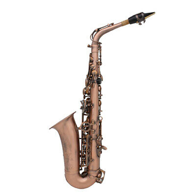 Alto Saxophone Kit w/ Mouthpiece Case Straps Reeds Cleaning Cloth Red Bronze