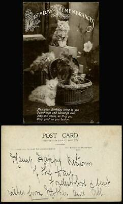 5 Cats Little Kittens Basket Birthday Remembrances Purest Joys Old R.P. Postcard