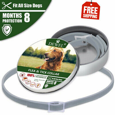 Dewel Flea Tick Collar Adjustable Large Dog Over 18lb 8 Month Protection