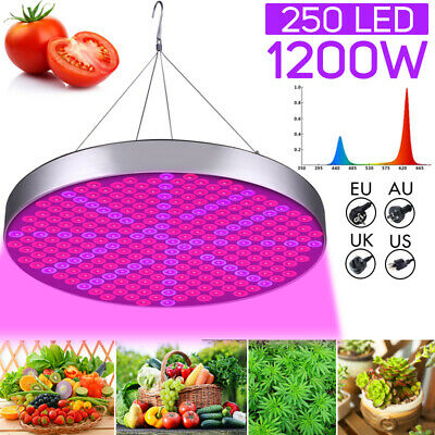 1200W LED Grow Light Panel Growing Lamp Full Spectrum  Hydroponics Indoor Flower