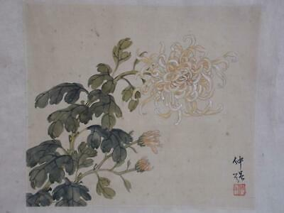 Signed Antique Chinese 1920s Republic Painting Ink & Watercolour Chrysanthemum