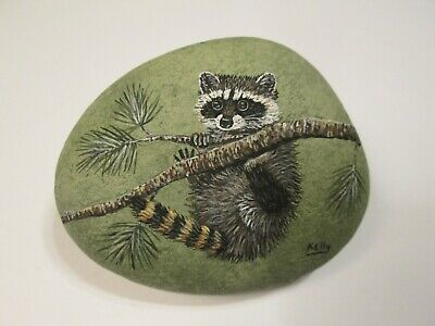 Raccoon hand painted on a rock Ann Kelly