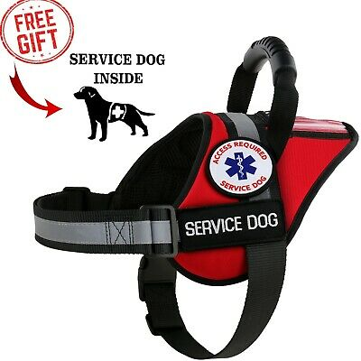 ALL ACCESS CANINE™ Service Dog - ESA Dog - Therapy Dog - Vest Waterproof Harness