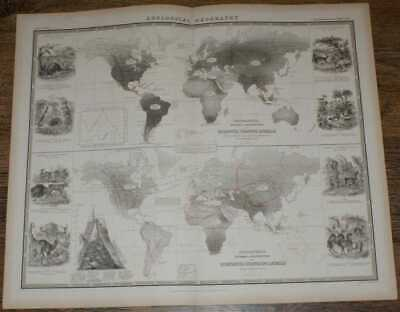Map: 1848 Zoological Geography - Division etc.of Gnawing and Ruminating Animals