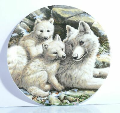 "Sammelteller  The Collectors Treasury  ""Arctic Wolf Family""  mit Zertifikat  OVP"
