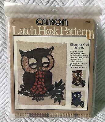 Caron 1977 Sleeping Owl Latch Hook Wall Hanging Tapestry Rug Pattern Canvas