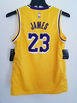 62a3da891 NWT Lebron James Los Angeles Lakers Nike Icon Swingman Youth L Signature  Jersey