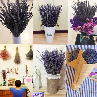 1 Bunch Lavender Natural Dried Flower Best Gift Plant Grass Decorations QA