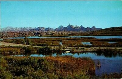"1950'S. ""THE NEEDLES"" FROM ROUTE 66. NEEDLES, CA. POSTCARD u14"