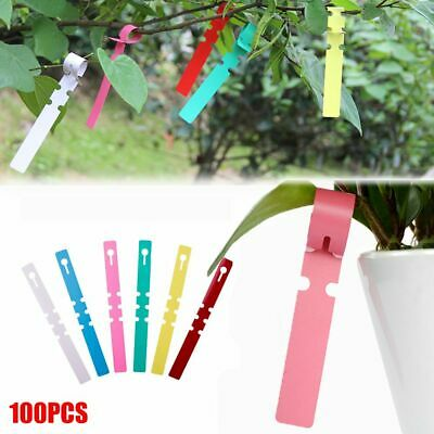 100pcs Garden Plant Pot Markers Plastic Stake Tied Tag Court Lawn Seed LabelODUS