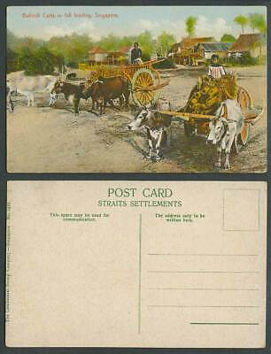 Singapore Old Postcard Double Bullock Carts in Full Loading Village Street House