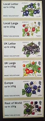 Autumn Stampex 2017 - Je01 - 'Fruits And Berries' Collector Strip - Fdi