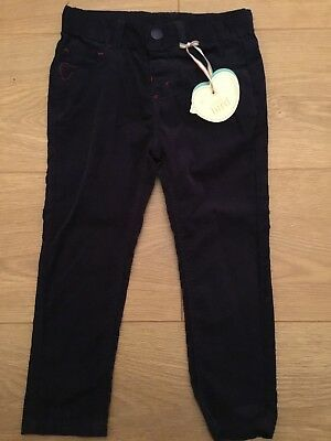 Little Bird By Jools Oliver Boys / Girls Turn Up Navy Cord Trousers 9-12 Months
