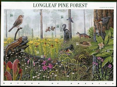 2002 LONGLEAF PINE FOREST Nature of America #4 Mint MNH Sheet 10 34¢ Stamps 3611